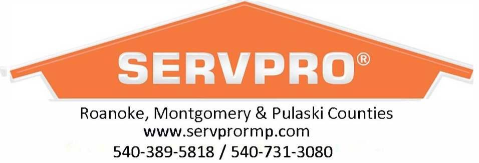 Logo RMP web & phone (1)